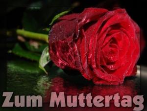 0504_01939_muttertag