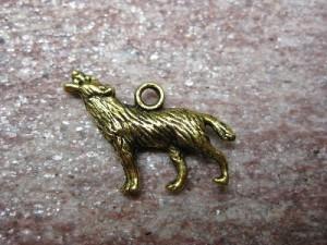 A_wolf_gold